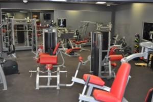 gym maybe